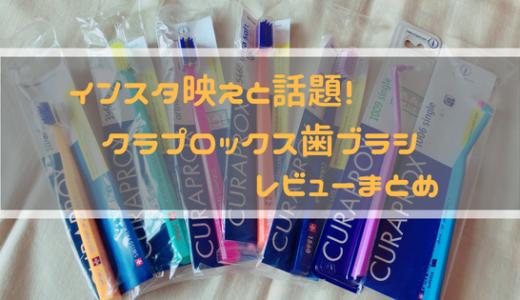 キュラプロックス歯ブラシは大きくて磨きにくいは本当?歯科衛生士が実際に使ってみて素直にレビューを書いてみた!